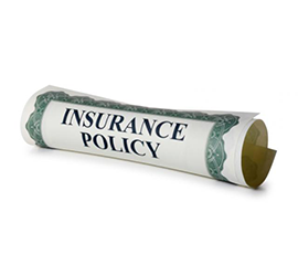 Insurance Policy Type